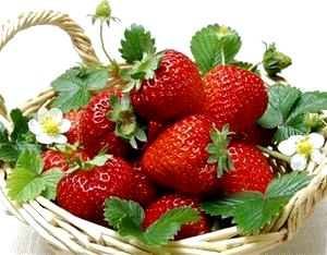 Клубничный сезон: что необходимо знать о вкусной ягоде?