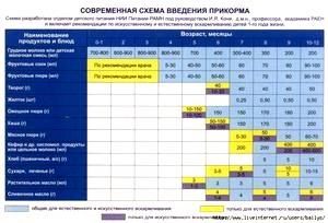 Прикорм в 6 месяцев: организация и особенности введения прикорма в 6 месяцев