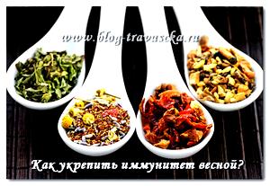 Травяной чай для детей, детские травяные чаи