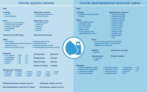 1a660e41-7036-473d-908c-cd18d8655479__infograph